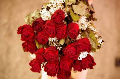 Roses, trandafiri, flowers, rose, flower, beauty, petals, nice, sensation, sentiment, feeling, anniversary, gift,many, together, red, rosii, bouquet, buchet,