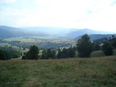 panorama, mountains, munti, filed, places, camp, trees, beautiful, cer, blue, sky, albastru