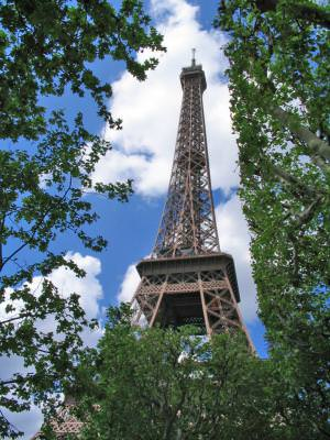 eiffel, tower, france, french, metalic, architecture, attraction, trees, sky, clouds, blue, city, europe, tall, turn, franta, francez, arhitectura, atractie, copaci, pomi, cer, nori, oras, europa, inalt