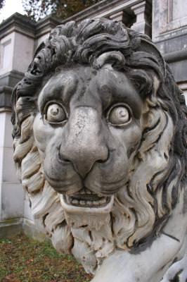 statuie, leu, piatra, Peles, Sinaia, istorie, muzeu, museum, history, lion, rock, statue