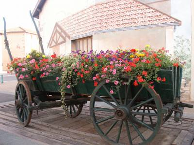 flowers, painting, caruta, wheels, roti