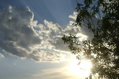 nature, sky, sunset, sunrise, hot, spring, autumn, season, clouds, cer, blue, tree, leaves