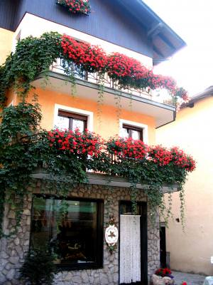 house, balcony, balcon, buildin, casa, , rosu, alb, decoration, flower, floare
