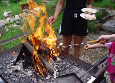lemn, foc, jar, rosu, galben, portocaliu, caldura, cald, wood, fire, fireplace, yellow, orange, flames, heat, warmth, burning, camp, barbeq,