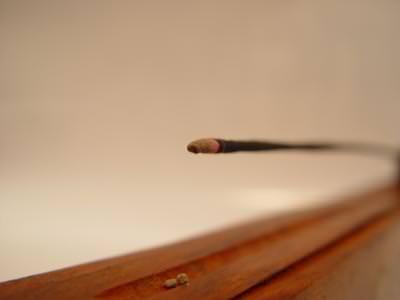 stick, close-up, smoke, betisor, bat, fum