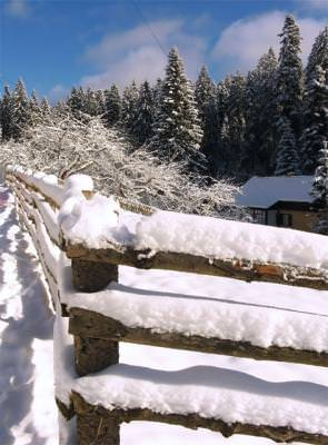 munte, iarna, zapada,, snow, gard, fence, cer, blue, sky, albastru, copaci, trees