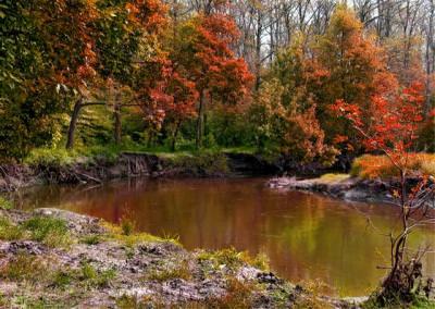 water, trees, river, autumn, peisage, apa, peisaj, toamna, rau, copaci