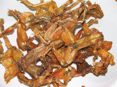 fried frogs, eat, food, mancare, broaste prajite