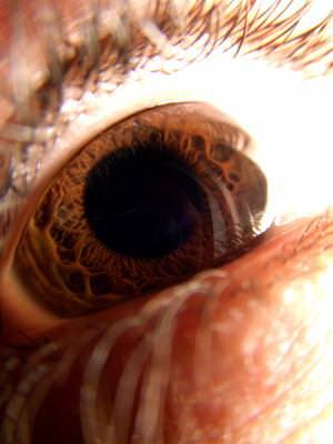 iris, ochi, detaliu, close-up, macro