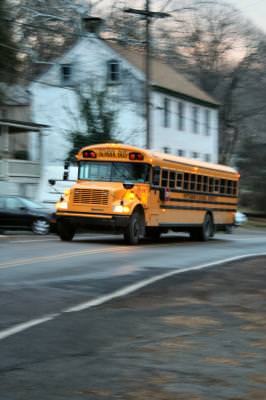 school, bus, school bus, yellow, road, country, countryside, PA, Pennsylvania