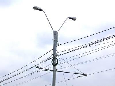 wire, wires, fire, fir, telefon, light, sky, blue sky, cer albastru, cer, linii telefonice, telefon, cabluri