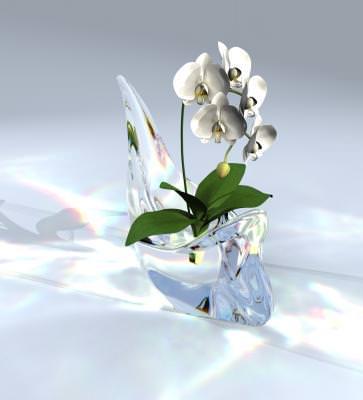 spring, primavara, flower, floare