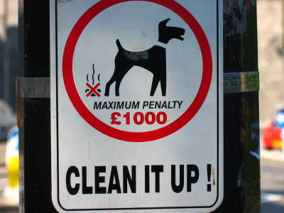 sign, pet, penalty, fine, clean, semn, animal, de, casa, curata, amenda