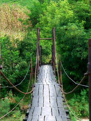 Rural, Bridge, pod, natura, nature, verde, green, crossing, trecere, pod, suspended, suspendat