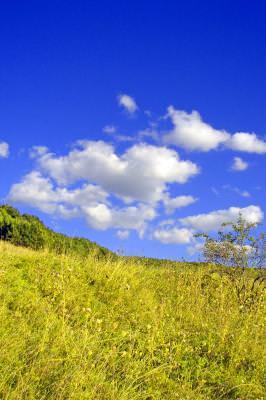 color, colored, culoare, colorat, cer, sky, nori, clouds, nature, natura