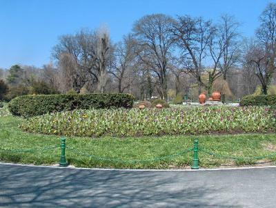 park, parc, flowers, flori, floare, alee, alley