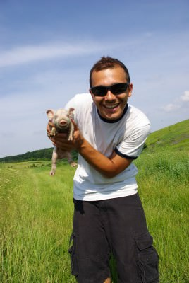 man, pig, young, summer, green, pasture, fields, blue sky, white t-shirt, sun glasses