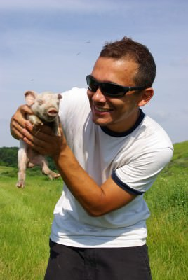 man, pig, young, summer, green, pasture, fields, blue sky, white t-shirt, sun glasses, animal, wild
