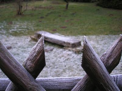 gradina, gard, fence, garden, wood, lemne, iarba, leaves