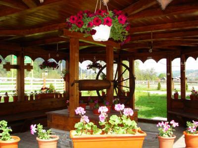 fountain, fantana, wheel, roata, spite, spikes, rural, tara, flowers, flori, gazeboo,