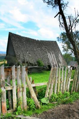 cabin, hut, house, rural, fence, wood, yard, grass, roof. coliba, casa, curte, gard, lemn