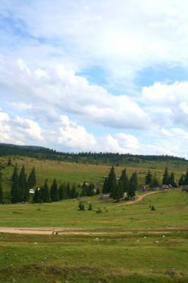 nature, mountains, hills, grass, quiet, houses, rural, fir, trees, cabins, lodges, sky, clouds, natura, dealuri, flori, coliba, cabana, tara, munti, brazi, nori, iarba, cer, liniste