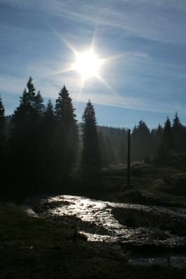 field, sun, trees, river, shine, sky, clouds, plants, camp, soare, apa, copaci, cer, nori, stralucire