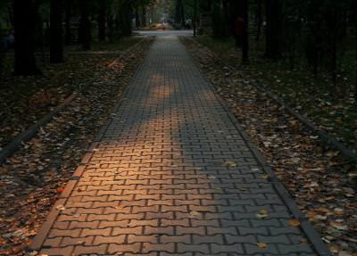 alley, park, lonely, trees, autumn, way, leaves, wooden, relax, alee, parc, toamna, frunze, relaxare, pustie, cale