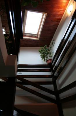 interior, arhitectura, istorie, muzeu, museum, history, castle, stairs, scari, climb, upstairs, fashionable, old, style, architecture, class