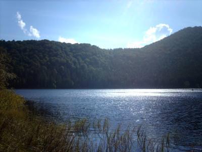 lake, water, mountain, sky, wood, forest, lac, munte, cer, padure, apa