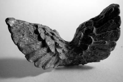 iron, metal, confection, forged, decorative, decoration, steel, artist, flame, burn, curved, black, white, eagle, wings, aripi,